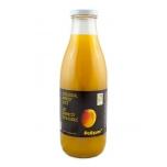 Delizum aprikoosimahl 1L